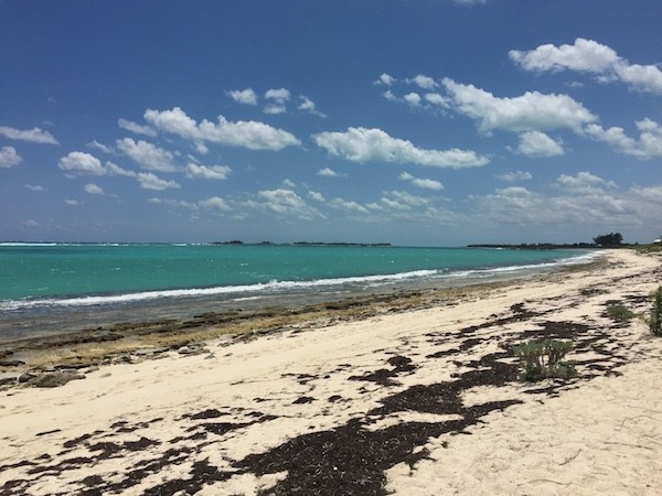 Bluff House Beach 2 in Bahamas