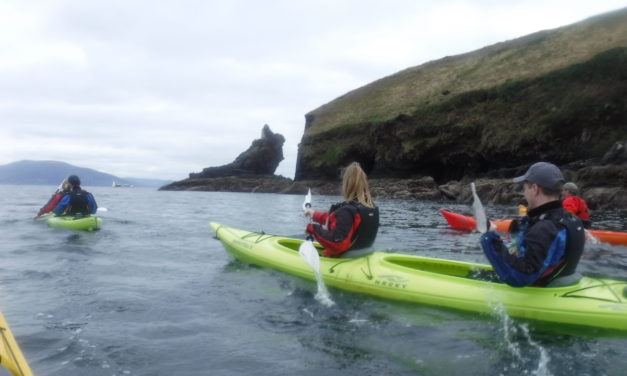 Our Kayaking Adventure In Dingle Ireland