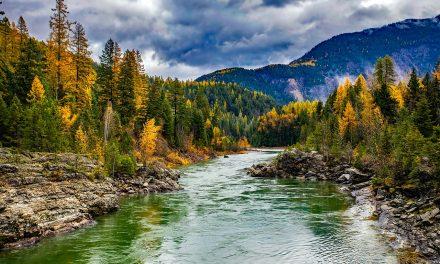 5 Romantic Cabin Getaways in Gorgeous Montana