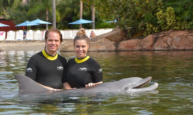 A Wonderful Rainy Day at Discovery Cove
