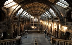 UK museums for honeymooners