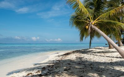 How To Spend a Honeymoon In Belize
