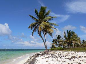 Punta Cana Honeymoon beach